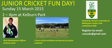 Junior Cricket Fun Day