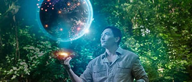 Multi-Dimensional Manifesting for Love & Joy in Health