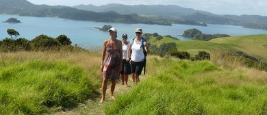 Urupukapuka Island Walk - Walk 8 - BOI Walking Weekend