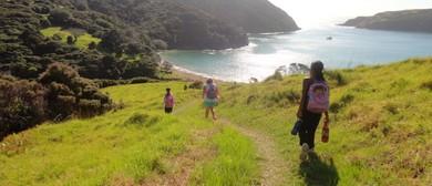 Whangamumu Walk - Walk 10 - BOI Walking Weekend