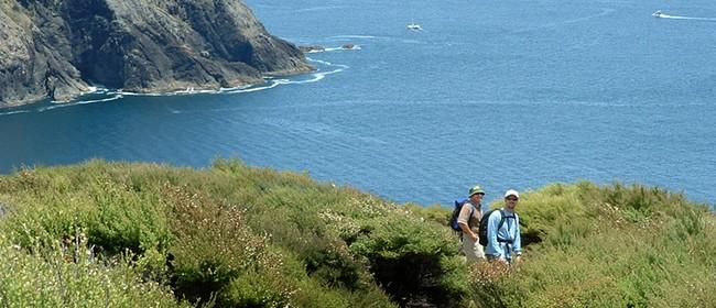 Deep Water Cove Walk - Walk 12 - BOI Walking Weekend