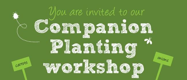 Companion Planting Workshop
