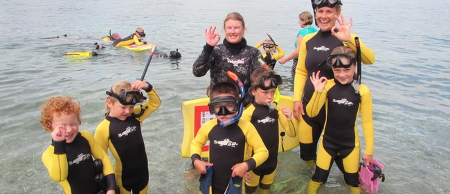 Community Guided Snorkel Day