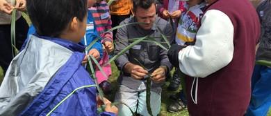 Childrens Adventure Workshops