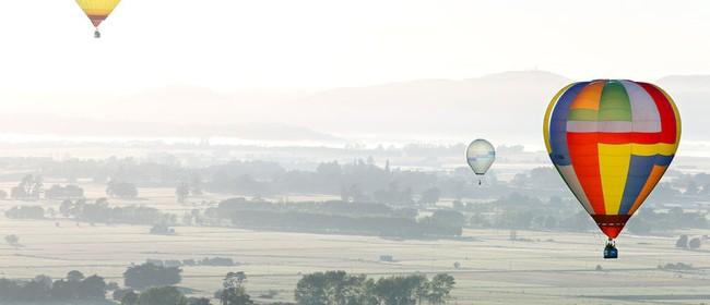 Wairarapa Balloon Festival - Balloon Rides