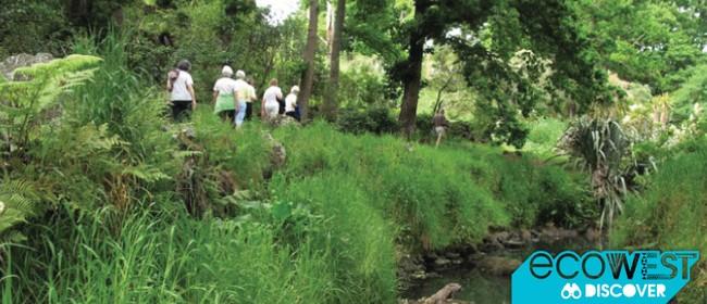 Oakley Creek Stream Restoration Tour