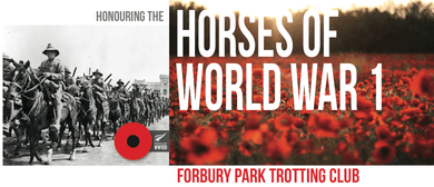 Honouring the Horses of World War 1