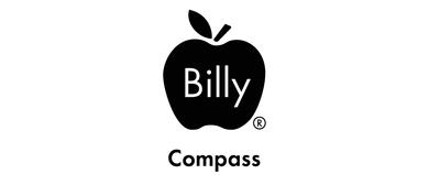 Billy Apple Art Walks