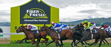 Fiber Fresh Thoroughbred Breeders Stakes Day