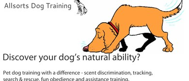 Allsorts Dog Training - General Training Sessions