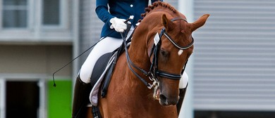 Central Districts Dressage