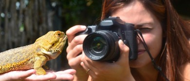 Auckland Zoo Beginners Photography Workshop