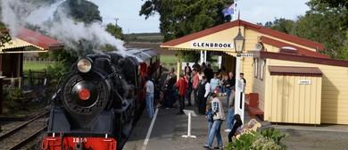 Ride the Steam Train to the Waiuku Military Display