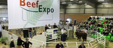 Te Pari Beef Expo