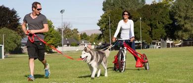 Ridge Runners Sled Dog Racing Club Open Day