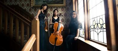 Pettman Open Chamber Music Trinity Trio