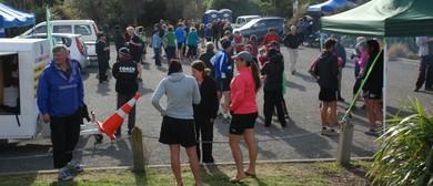 Mount Vernon Grand Traverse,  Fun Run/Walk, Kids Challenge