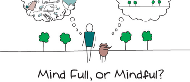 Four Week Mindfulness Course - Introduction to Mindfulness