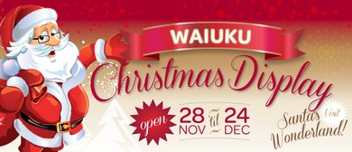 Waiuku Christmas Display