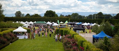 Piako Fete 2015 – Ladies Day Out!