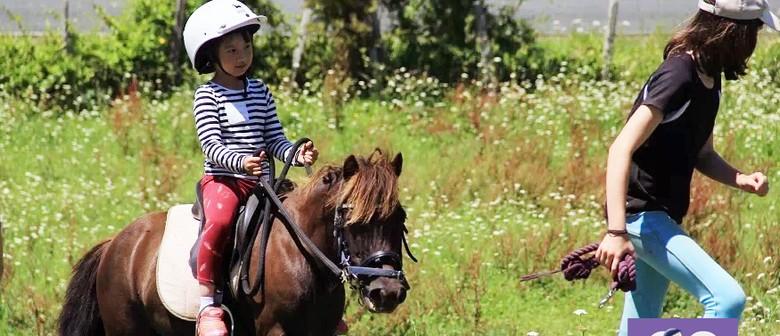 Pony Rides School Holiday Programme