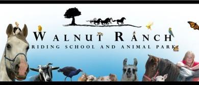 Walnut Ranch Animal Farm Park Open Days