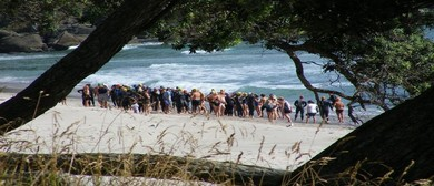 Orokawa to Waihi Beach 2 km Ocean Swim