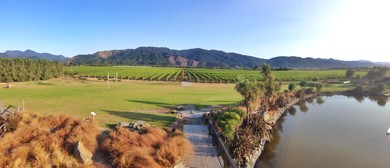 Party In The Vines 2015