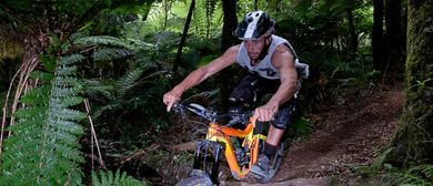 Giant 2W Gravity Enduro - Race 3