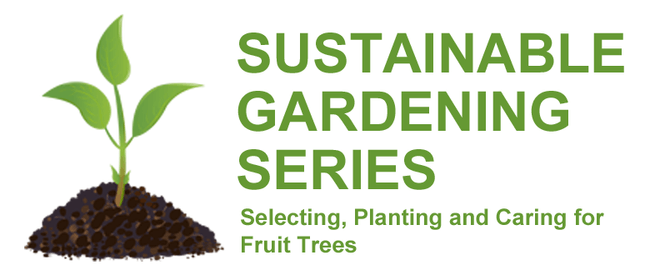 Selecting, Planting and Caring for Fruit Trees