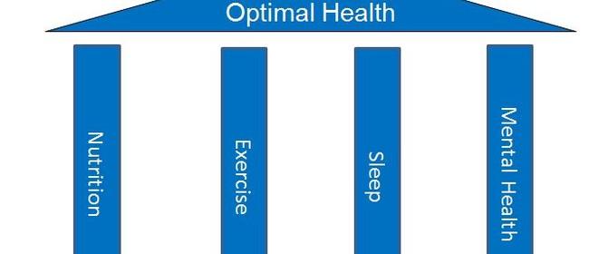 Optimal Health & Success