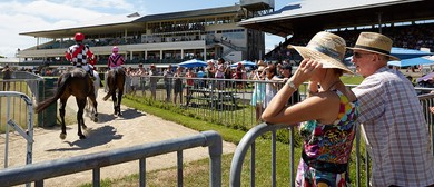 Bostock NZ Spring Racing Carnival - Windsor Park Plate
