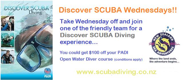 Discover SCUBA Wednesdays
