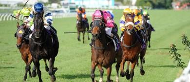 Ellerslie Business Partners Raceday