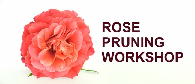 Rose Pruning Workshop