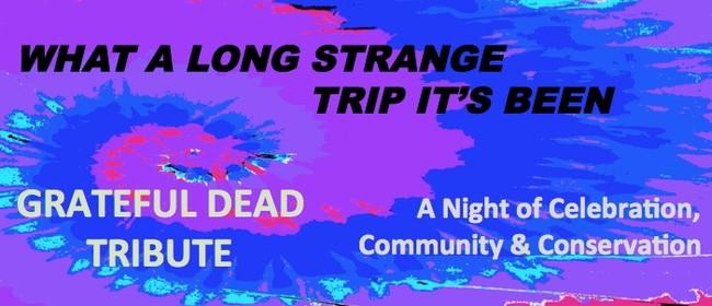 Grateful Dead Tribute