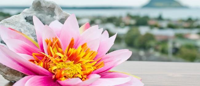 8 Weeks of Mindfulness Meditation