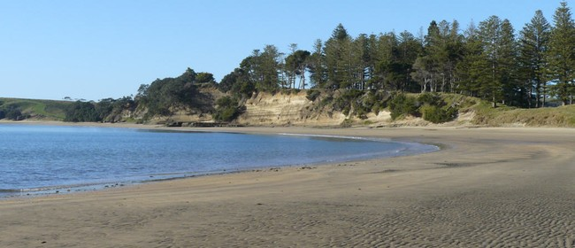 Motuihe Island Guided Walk