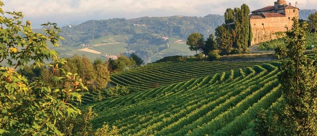 Friday Wine Tasting - Northern Italy