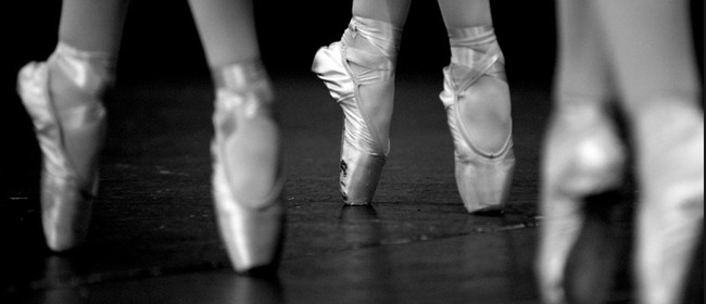 Ballet Pointe Course - With Ione