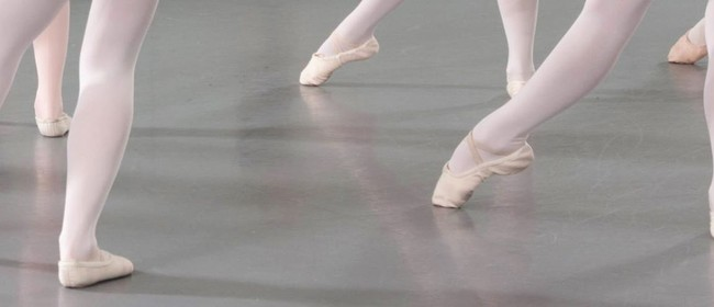 Ballet Beginner 1 Course with Ione