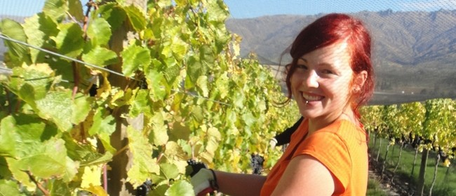 "Down to Earth: Misha's Vineyard Wines ""Earn Your Lunch"""