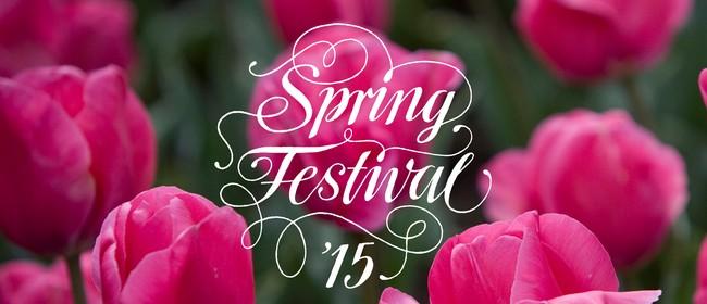 Spring Festival walk  – Spring Festival 2015
