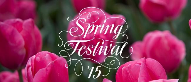 Flowers Close-up – Spring Festival 2015