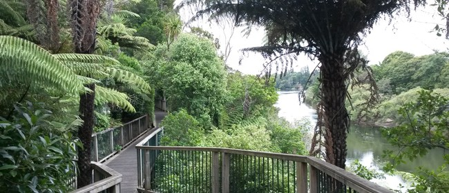4Seasons River Run/Walk 5km or 10km