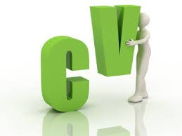 Cv writing services auckland The Hub Royal Oak