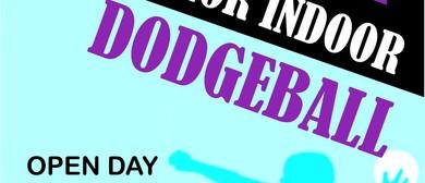 Junior Dodgeball Open Day