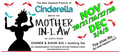 Cinderella Meets the Mother in Law