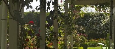 Trinity Farm Rose Festival