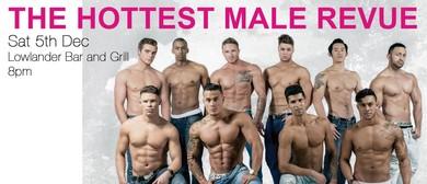 La Risqué | The Hottest Male Revue Show
